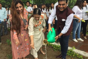 Tree plantation drive – Adopt Plantation as the new fashion